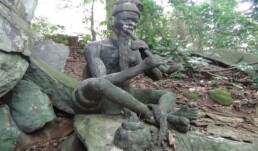 Sacred Forest in Nigeria Igbo Olodumare